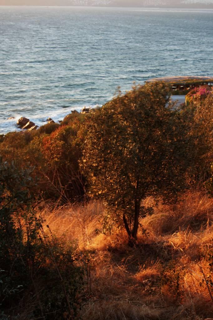 Herbst in der Ägäis